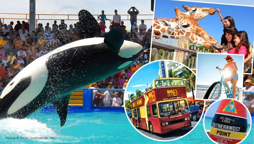 Quieres Recorrer Las Prinles Y Más Recomendadas Atracciones De Miami Te Gustaría Ir Paseo En Barco Por La Bahía Admirar El Downtown